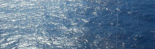 En uge med vand, masser af vand og kun vand